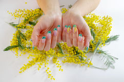 Flores para o dia das mulheres internacionais Fotos de Stock