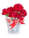 Flores para o dia de Valentim. imagens de stock