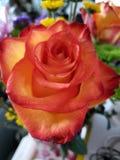 Flores para usted foto de archivo