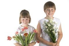Flores para você Imagem de Stock