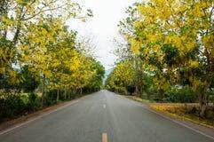 Flores pela estrada Imagem de Stock Royalty Free