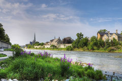 Flores pelo rio grande em Cambridge, Canadá imagens de stock royalty free
