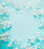 Flores pequenas brancas bonitas na luz - fundo azul de turquesa, vista superior Fotos de Stock Royalty Free