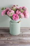 Flores persas rosadas del ranúnculo Ranúnculo rizado de la peonía en la poder verde del vintage, espacio de la copia Fotografía de archivo
