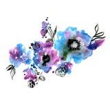 Flores pintados à mão da aquarela bonito ilustração royalty free