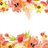 Flores pintados à mão da aquarela bonito Elementos para o projeto invitation Cartão de casamento Cartão de aniversário ilustração stock