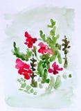 Flores, pintura de la acuarela fotografía de archivo libre de regalías