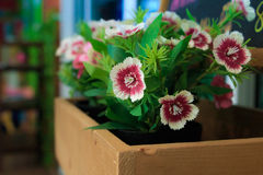 Flores plásticas Foto de archivo