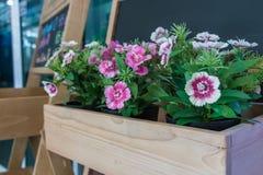 Flores plásticas Fotos de archivo libres de regalías