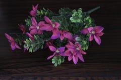 Flores plásticas coloridas Fotos de Stock
