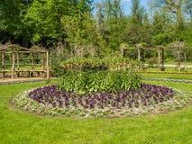 Flores plantadas en un círculo en un parque foto de archivo