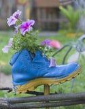 Flores plantadas en un zapato viejo Imagen de archivo libre de regalías