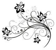 Flores pretas, elemento floral Fotos de Stock Royalty Free