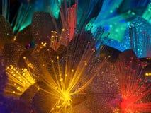 Flores que brillan intensamente de hadas hermosas Imagenes de archivo