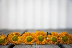 Flores que colocan en el pórtico de madera Foto de archivo libre de regalías