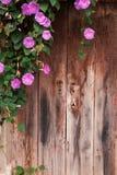 Flores que cuelgan delante de una puerta de madera vieja Imagenes de archivo