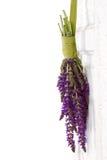 Flores que cuelgan en una puerta de la vendimia foto de archivo