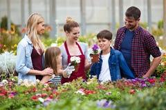 Flores que eligen y de compras de la familia hermosa en el invernadero Imagen de archivo