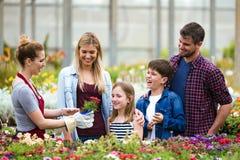 Flores que eligen y de compras de la familia hermosa en el invernadero Imágenes de archivo libres de regalías