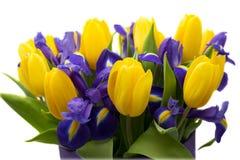 Flores Ramo amarillo del tulipán y del iris Fotos de archivo libres de regalías