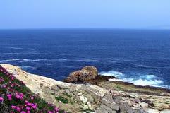 Flores, rocas y el mar Foto de archivo