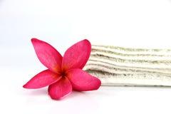 Flores rojas con la toalla blanca. Fotos de archivo