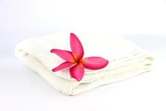 Flores rojas con la toalla blanca. Fotografía de archivo