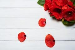 Flores rojas de la amapola en la tabla de madera blanca Imágenes de archivo libres de regalías