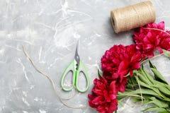 Flores rojas del peony Fotografía de archivo libre de regalías