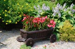 Flores rojas en el jardín en un pequeño carro de madera decorativo Fotos de archivo