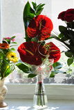 Flores rojas en florero Imágenes de archivo libres de regalías