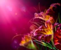 Flores rojas en un fondo rojo Fotos de archivo libres de regalías