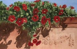 Flores rojas en un pote de arcilla del jardín imagen de archivo libre de regalías