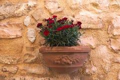 Flores rojas en una ejecución del pote de arcilla en la pared de ladrillo Foto de archivo
