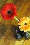 Flores rojas y anaranjadas Foto de archivo libre de regalías