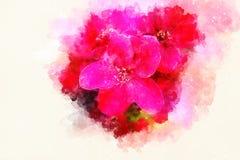 Flores rojas y fondo suavemente borroso de la acuarela Imagenes de archivo