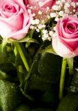 Flores románticas imágenes de archivo libres de regalías