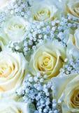 Flores românticas Imagem de Stock