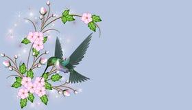 Flores rosadas con el colibrí Fotografía de archivo