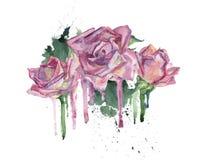Flores rosadas de la acuarela Imagen de archivo