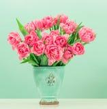 Flores rosadas del tulipán sobre fondo de la turquesa Imagen de archivo libre de regalías