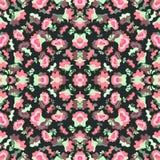 Flores rosadas en el ejemplo oscuro del vector del fondo Foto de archivo