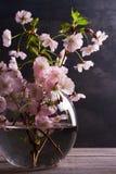 Flores rosadas en florero en fondo de madera gris Floración de la primavera Ramo de la flor Foto de archivo