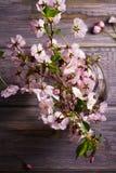 Flores rosadas en florero en fondo de madera gris Floración de la primavera Ramo de la flor Fotografía de archivo libre de regalías