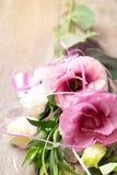 Flores rosadas en fondo de madera Concepto para la tarjeta de felicitaciones fotografía de archivo libre de regalías