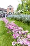Flores rosadas en Nunobiki Herb Garden en el soporte Rokko en Kobe, Japón Foto de archivo libre de regalías