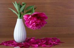 Flores rosadas en un florero, Foto de archivo libre de regalías