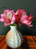Flores rosadas en un florero blanco Fotos de archivo