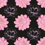 Flores rosadas en un fondo negro conjuntamente con un dibujo de la mano Vector el modelo inconsútil libre illustration