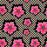 Flores rosadas exóticas retras en modelo a cuadros del fondo Foto de archivo libre de regalías
